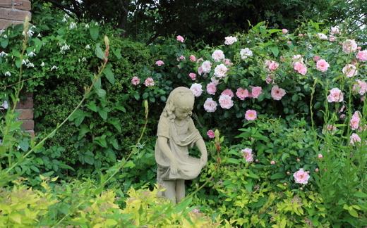 ある日の花菜ガーデンの風景